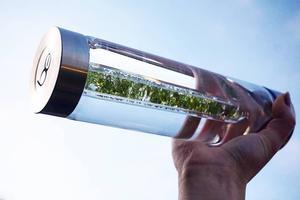 Kristallvattenflaska - Glas - Fresh